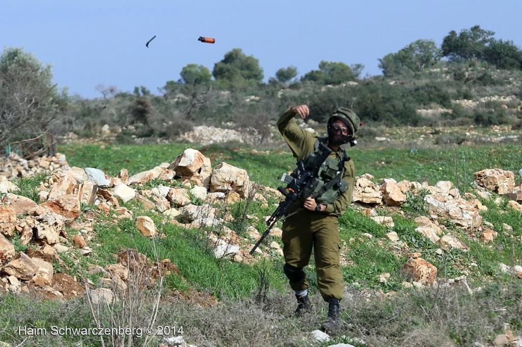Nabi Saleh 12/12/2014 | IMG_2893