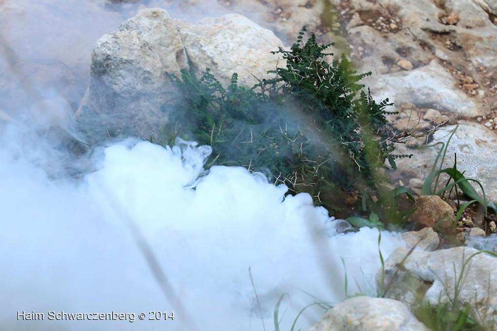 Nabi Saleh 19/12/2014 | IMG_3605