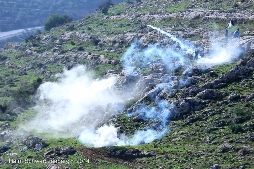Nabi Saleh 26/12/2014 | IMG_4652