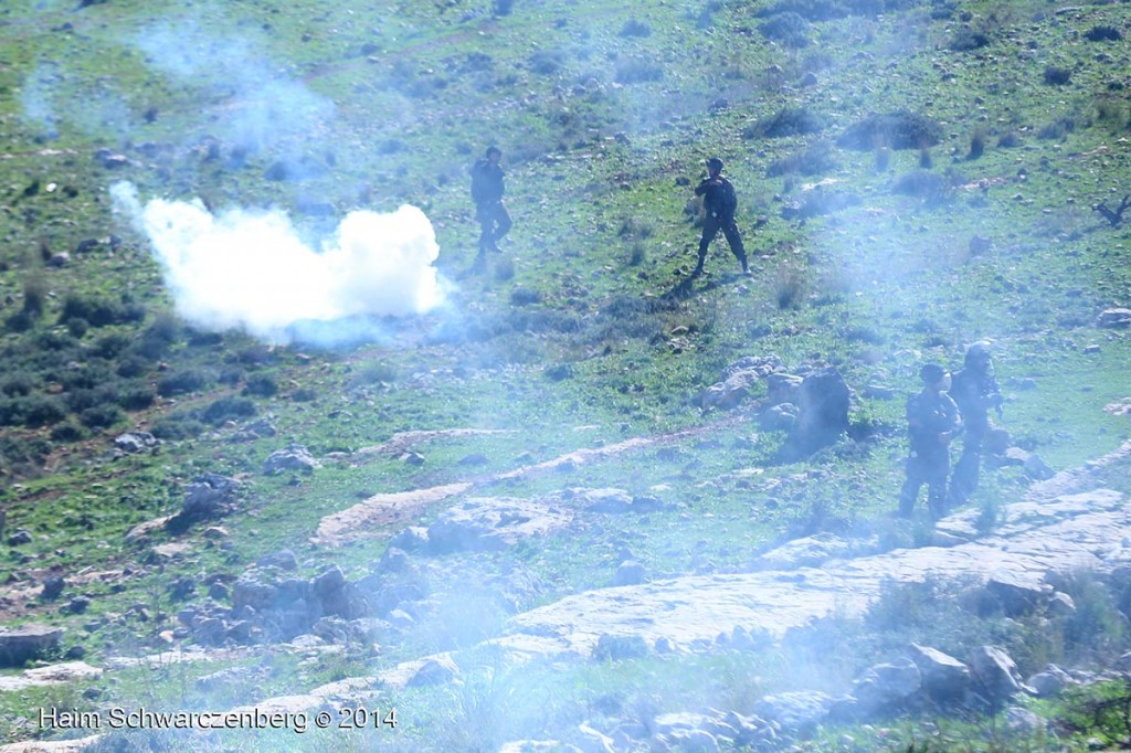 Nabi Saleh 26/12/2014 | IMG_4698