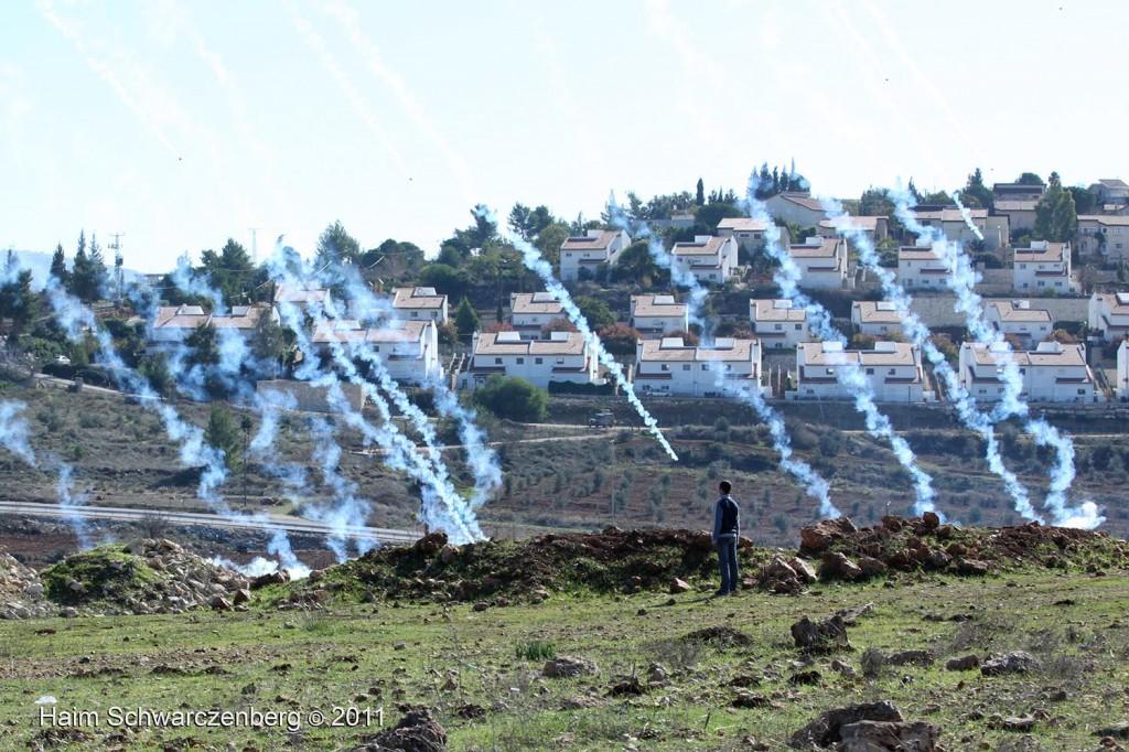 Nabi Saleh 11/12/2011 | IMG_8423