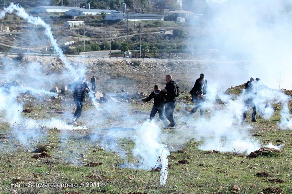Nabi Saleh 11/12/2011 | IMG_8432