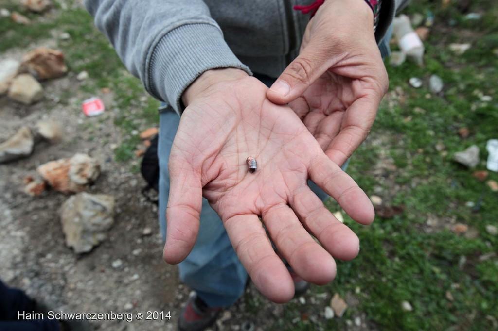 Nabi Saleh 12/12/2014 | IMG_9051