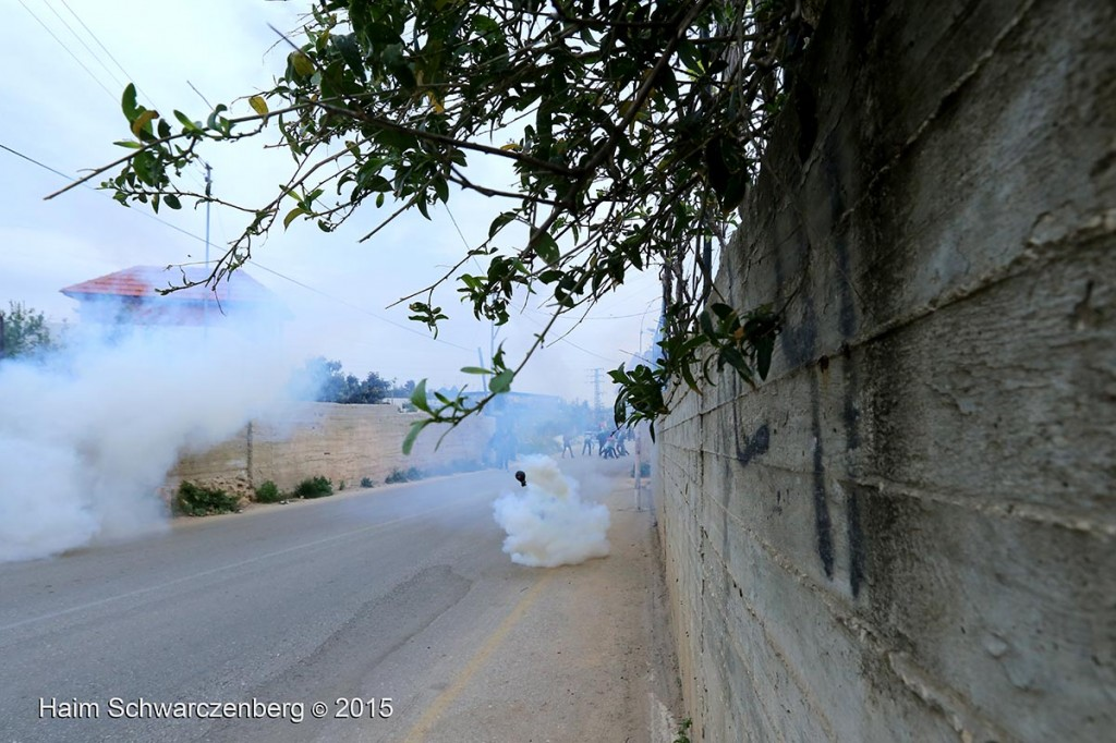 Land Day march in Nabi Saleh 28/03/2015 | IMG_7511