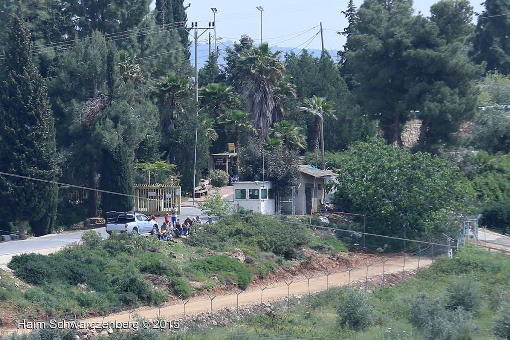 Nabi Saleh 17/04/2015 | IMG_0939