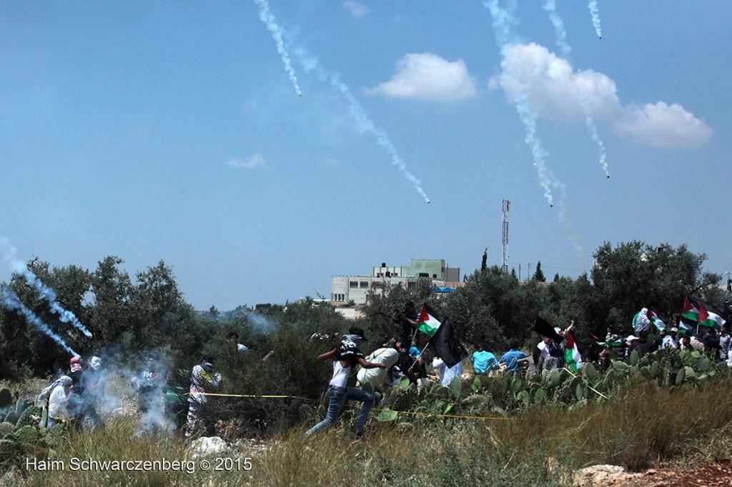 Nakba Day, Ni'lin 15/05/2015 | IMG_5650