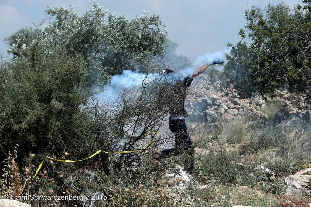 Nakba Day, Ni'lin 15/05/2015 | IMG_5913