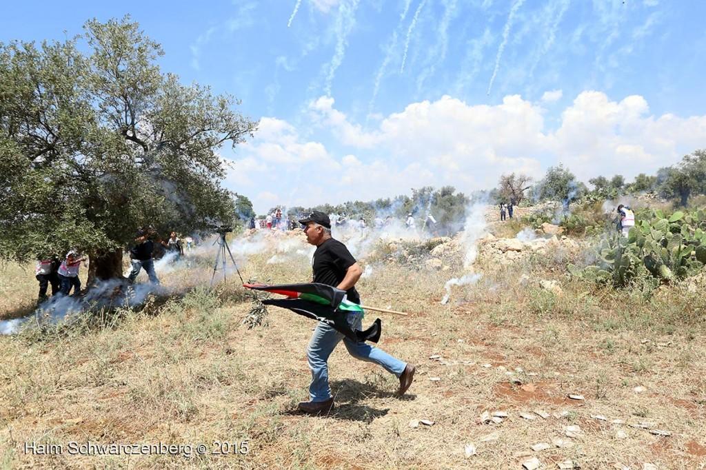 Nakba Day, Ni'lin 15/05/2015 | IMG_6780
