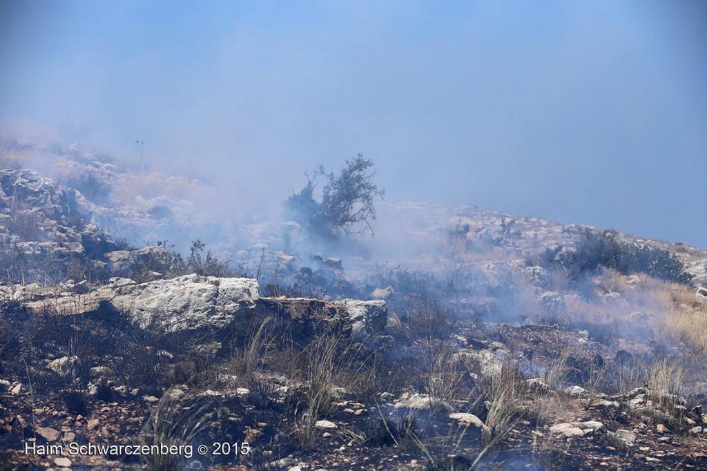 Nabi Saleh 03/07/2015 | IMG_4871
