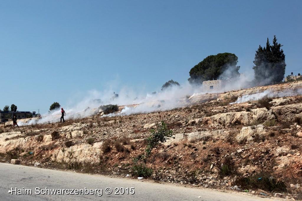Nabi Saleh 21/08/2015 | IMG_9354