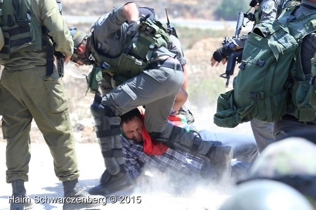 Nabi Saleh 04/09/2015   IMG_3977