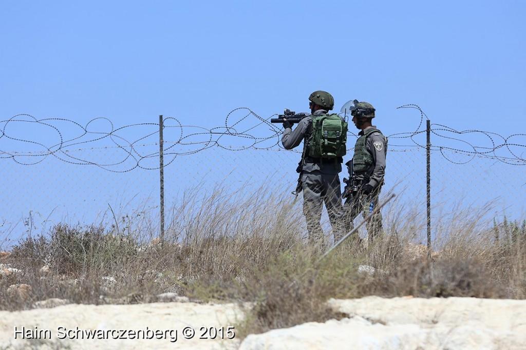 Nabi Saleh 04/09/2015   IMG_4326