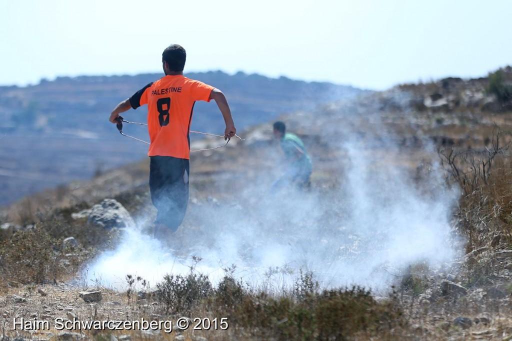 Nabi Saleh 04/09/2015   IMG_4424