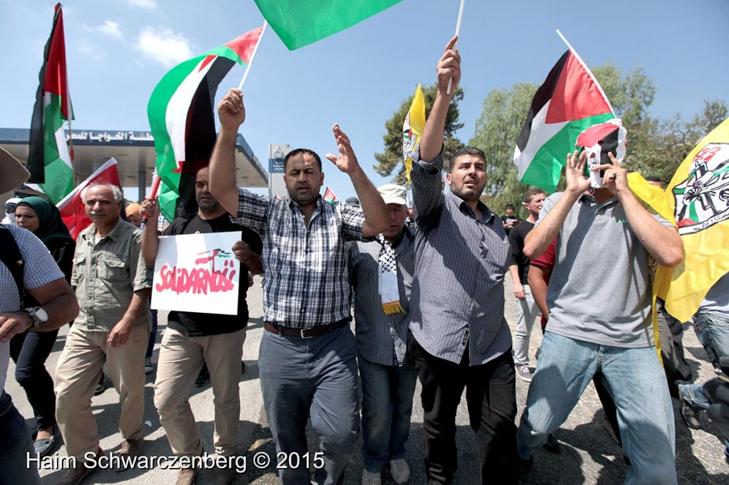 Nabi Saleh 04/09/2015   IMG_9754