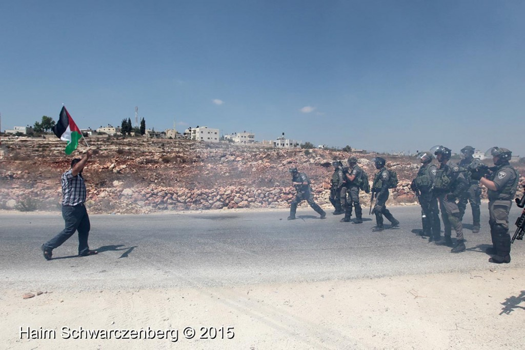 Nabi Saleh 04/09/2015   IMG_9784