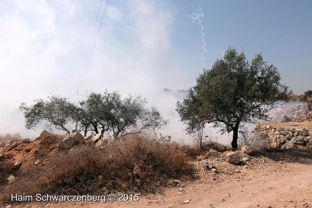 Bil'in - IMG_0188