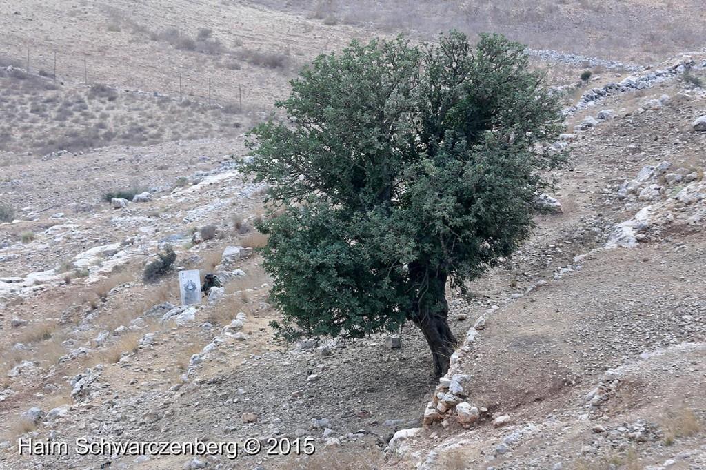 Nabi Saleh 02/10/2015   IMG_6393