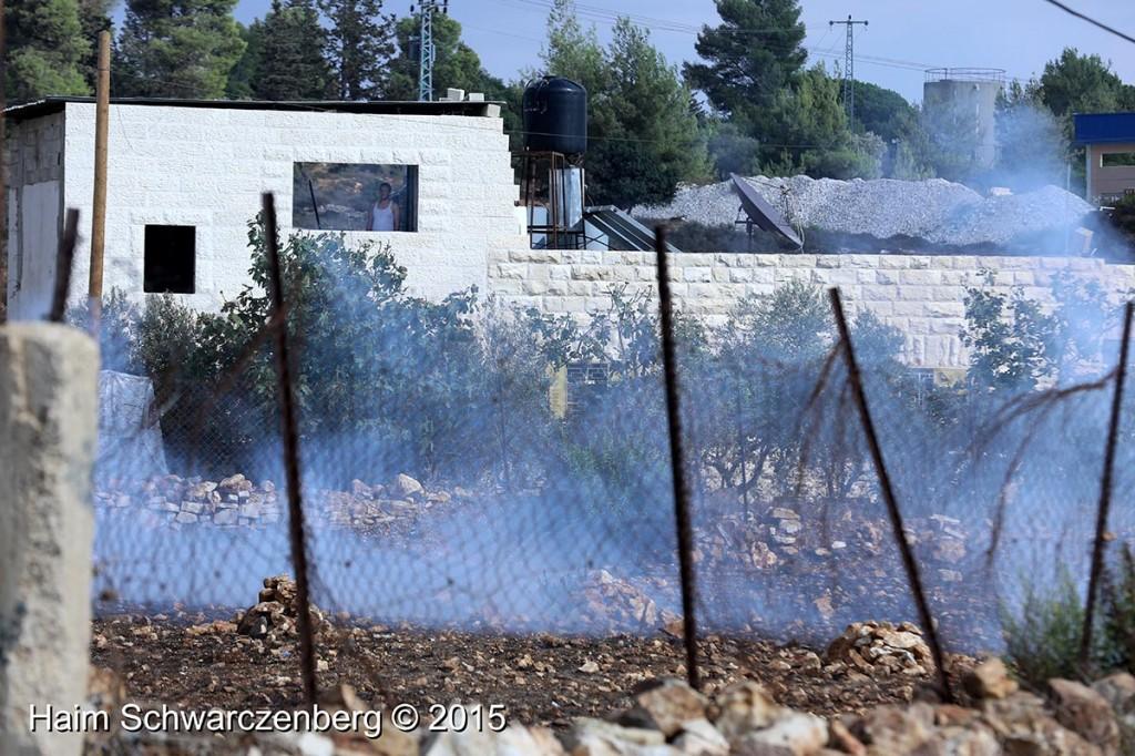 Nabi Saleh 09/10/2015   IMG_6866