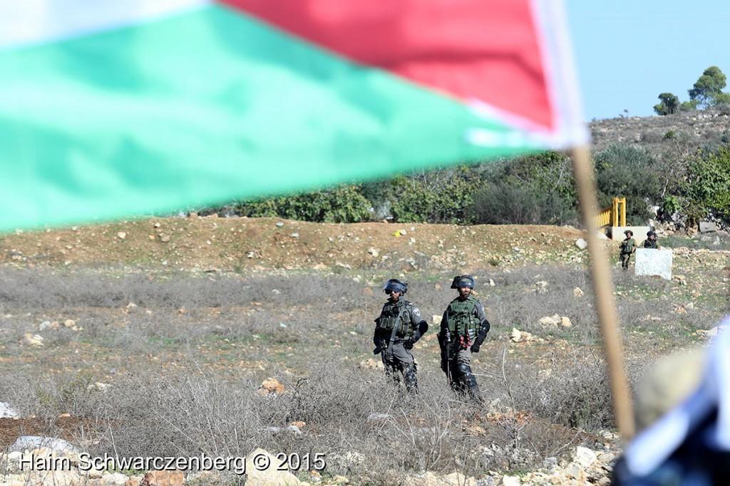 Nabi Saleh 13/11/2015 | IMG_0351