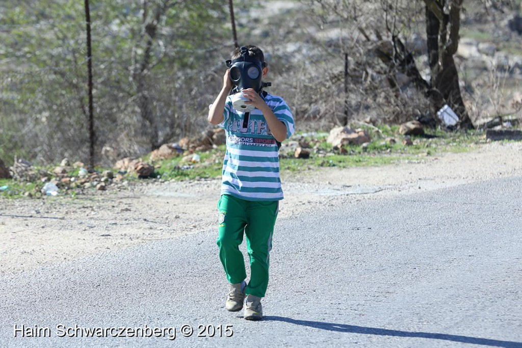 Nabi Saleh 13/11/2015 | IMG_0458