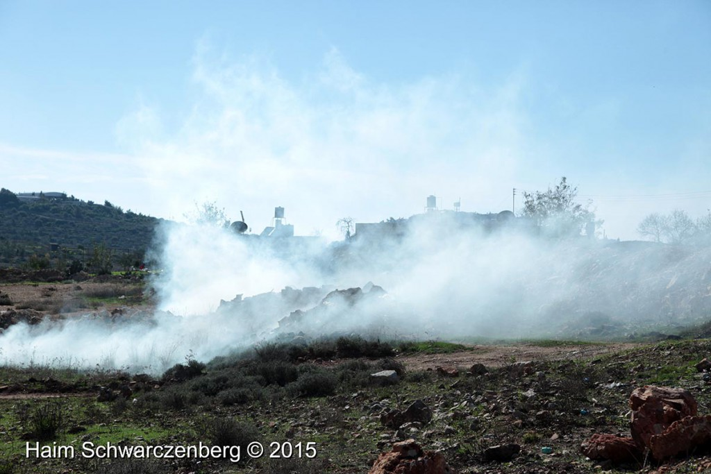 Nabi Saleh 20/11/2015 | IMG_0494