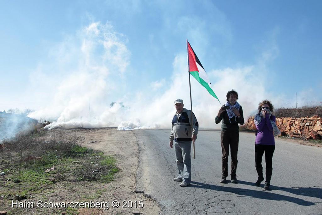 Nabi Saleh 20/11/2015 | IMG_0506