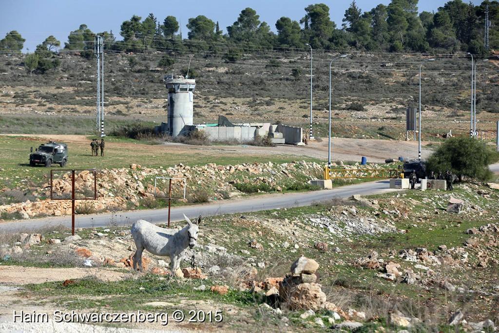 Nabi Saleh 11/12/2015 | IMG_3008