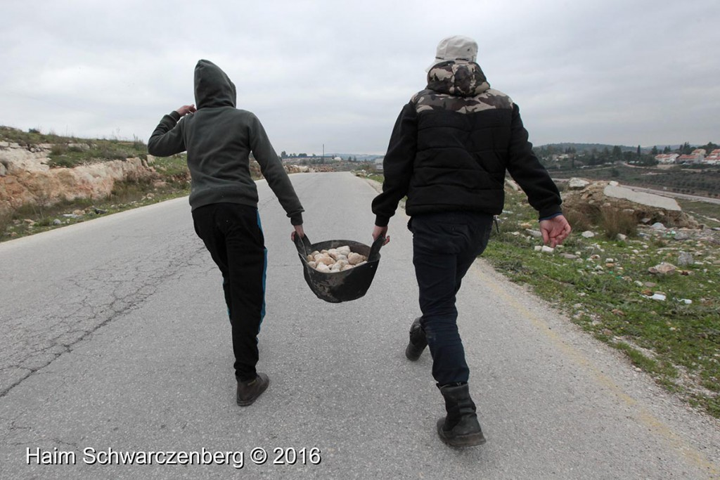 Nabi Saleh 29/01/2016 | IMG_1468