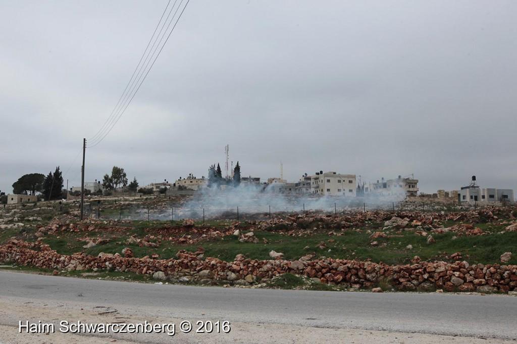 Nabi Saleh 29/01/2016 | IMG_1550