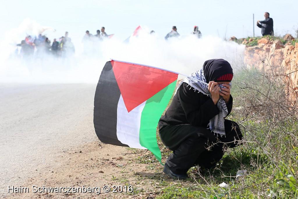 Nabi Saleh 22/01/2016 | IMG_7622