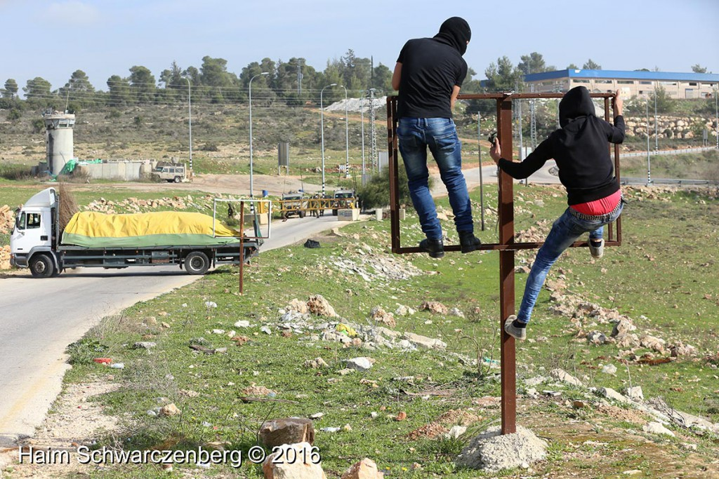 Nabi Saleh 22/01/2016 | IMG_7727