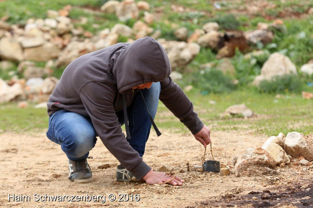 Nabi Saleh 29/01/2016 | IMG_8250