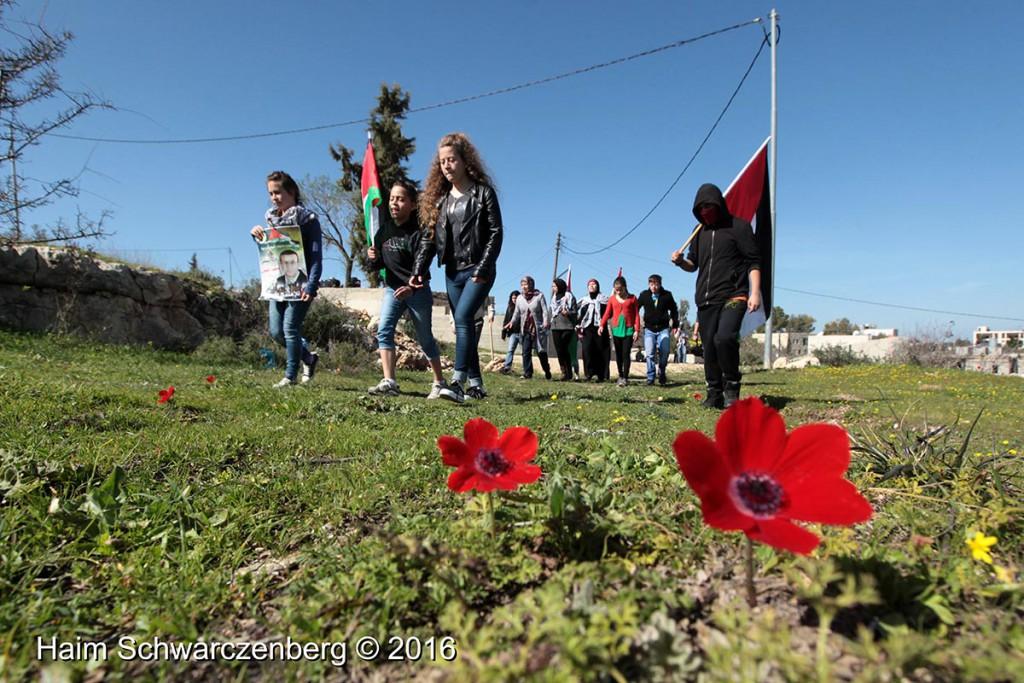 Nabi Saleh 12/02/2016 | IMG_1649