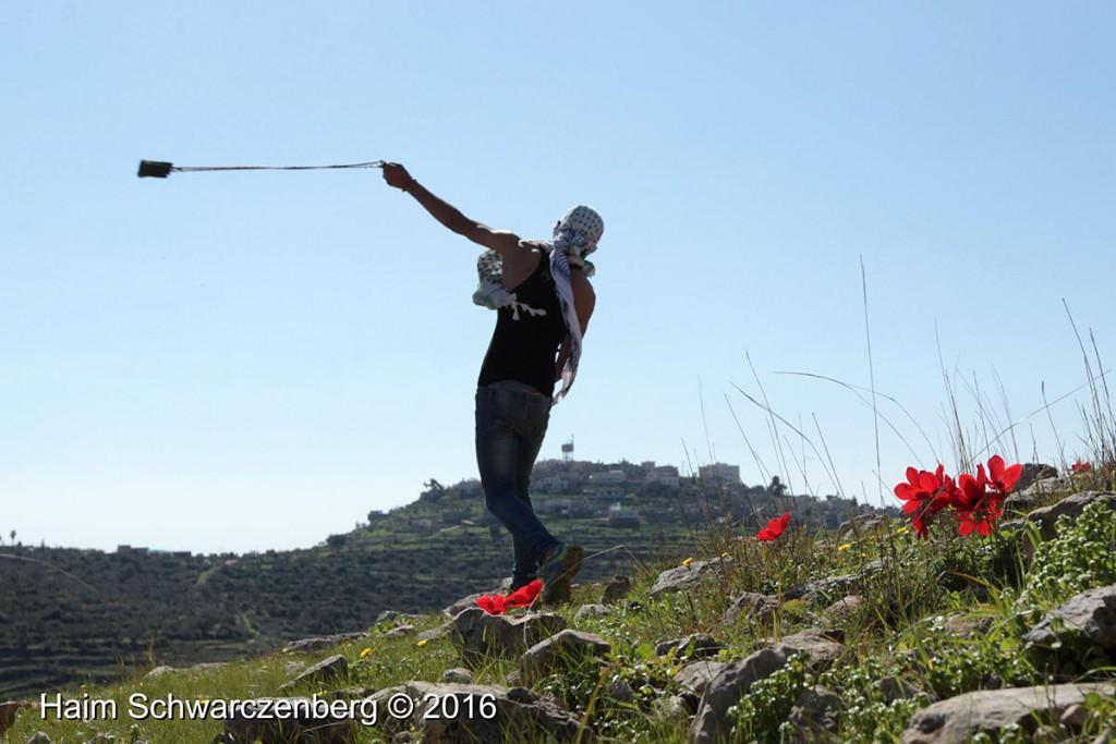 Nabi Saleh 12/02/2016 | IMG_1660