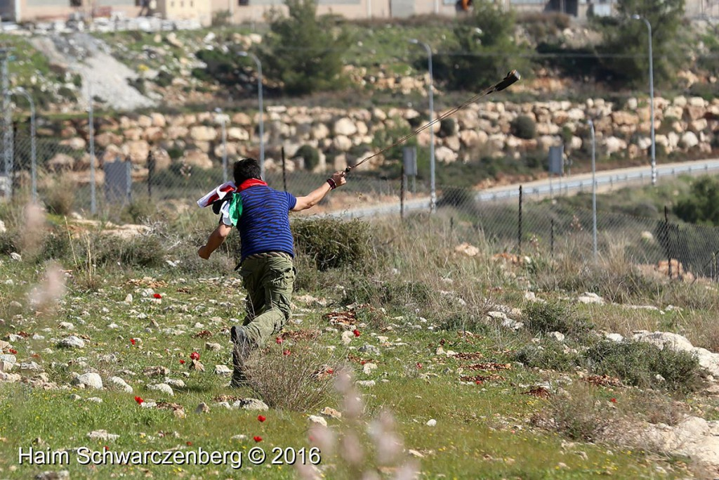 Nabi Saleh 05/02/2016 | IMG_9040