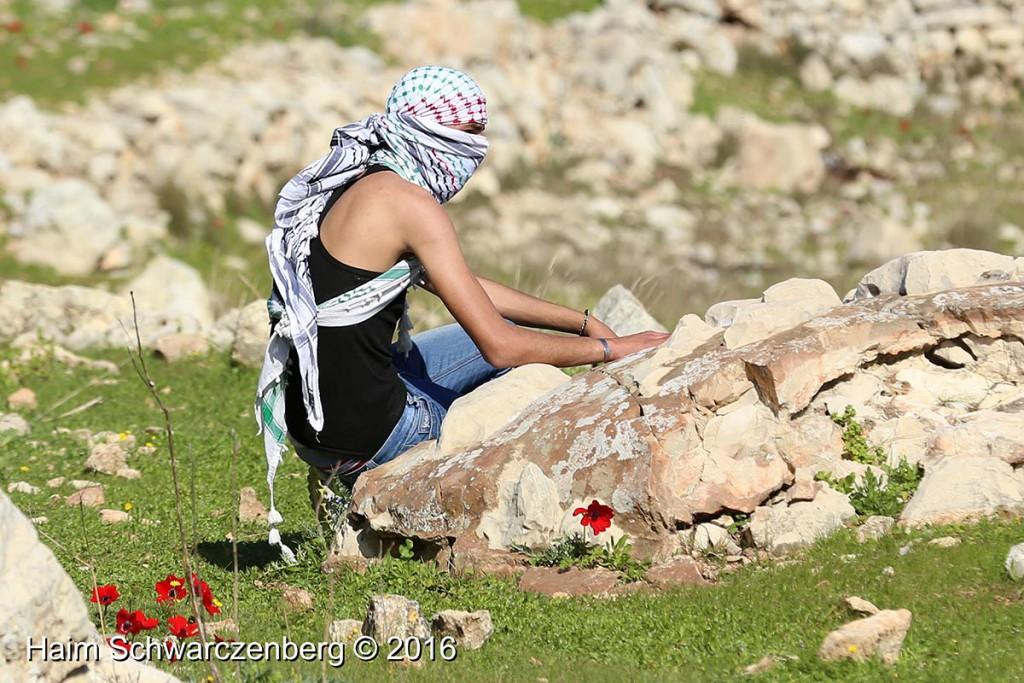 Nabi Saleh 12/02/2016 | IMG_9864