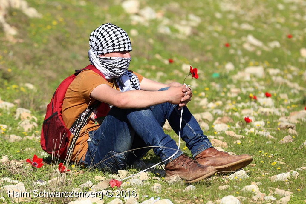 Nabi Saleh 12/02/2016 | IMG_9925