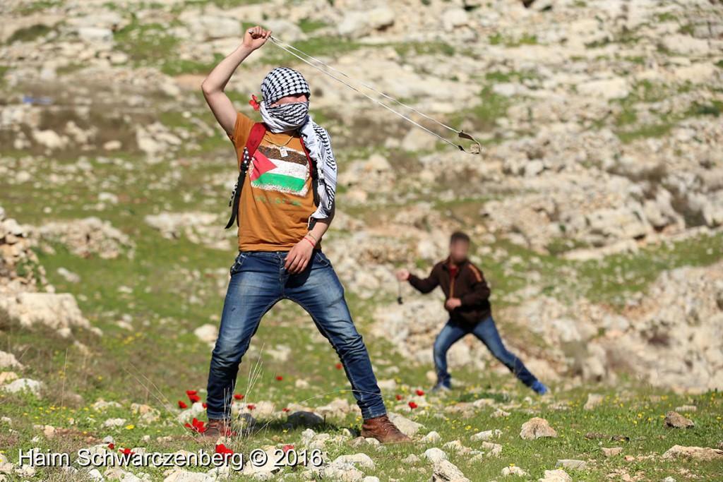 Nabi Saleh 12/02/2016 | IMG_9937