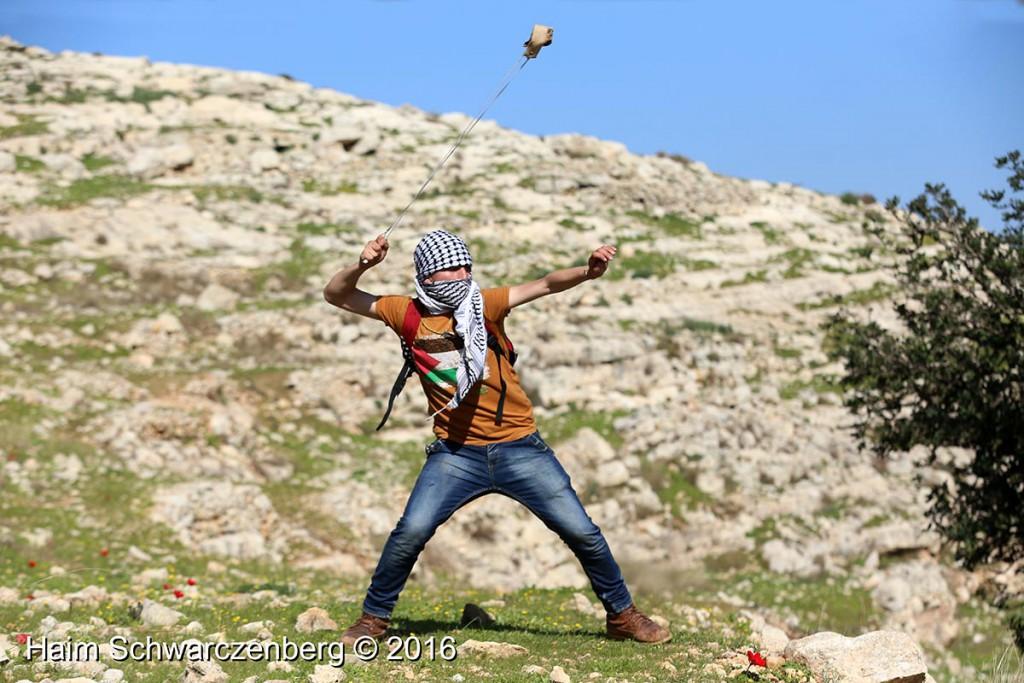Nabi Saleh 12/02/2016 | IMG_9964