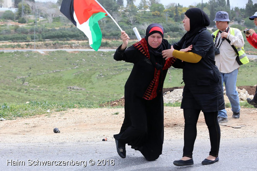 Nabi Saleh 25/03/2016 | IMG_4185