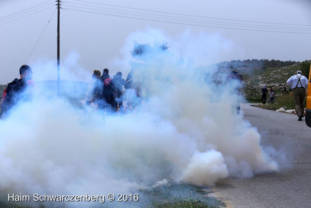 Nabi Saleh 25/03/2016 | IMG_4211