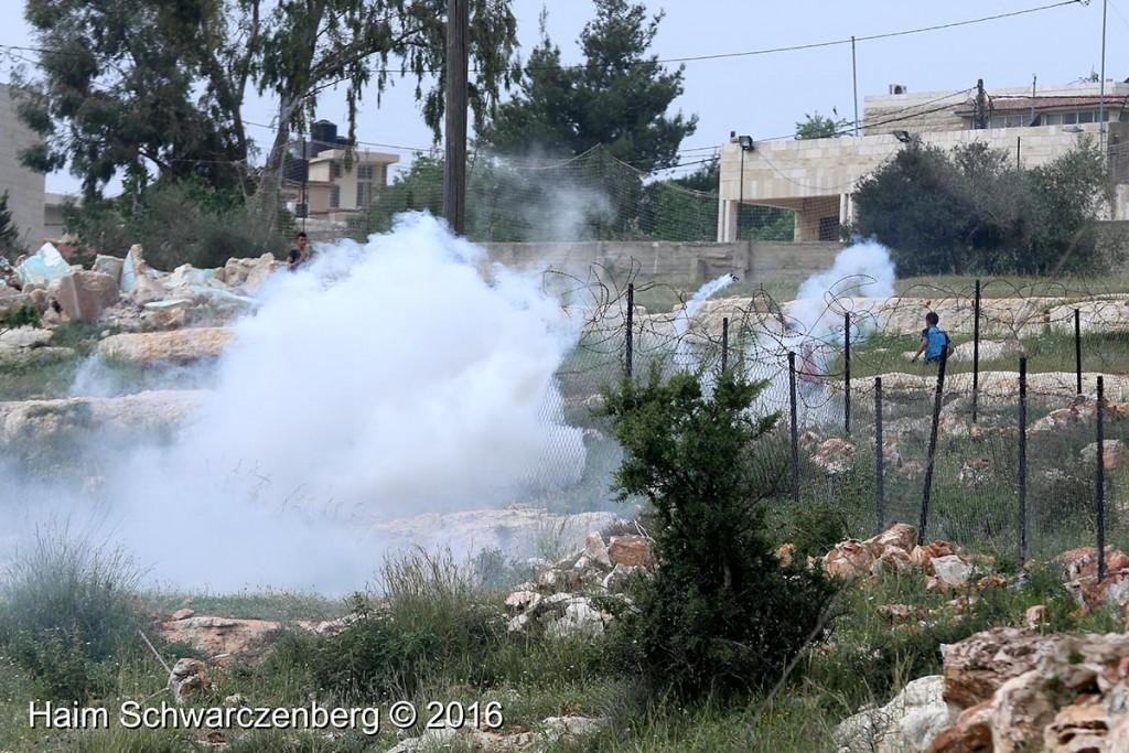 Nabi Saleh 25/03/2016 | IMG_4244