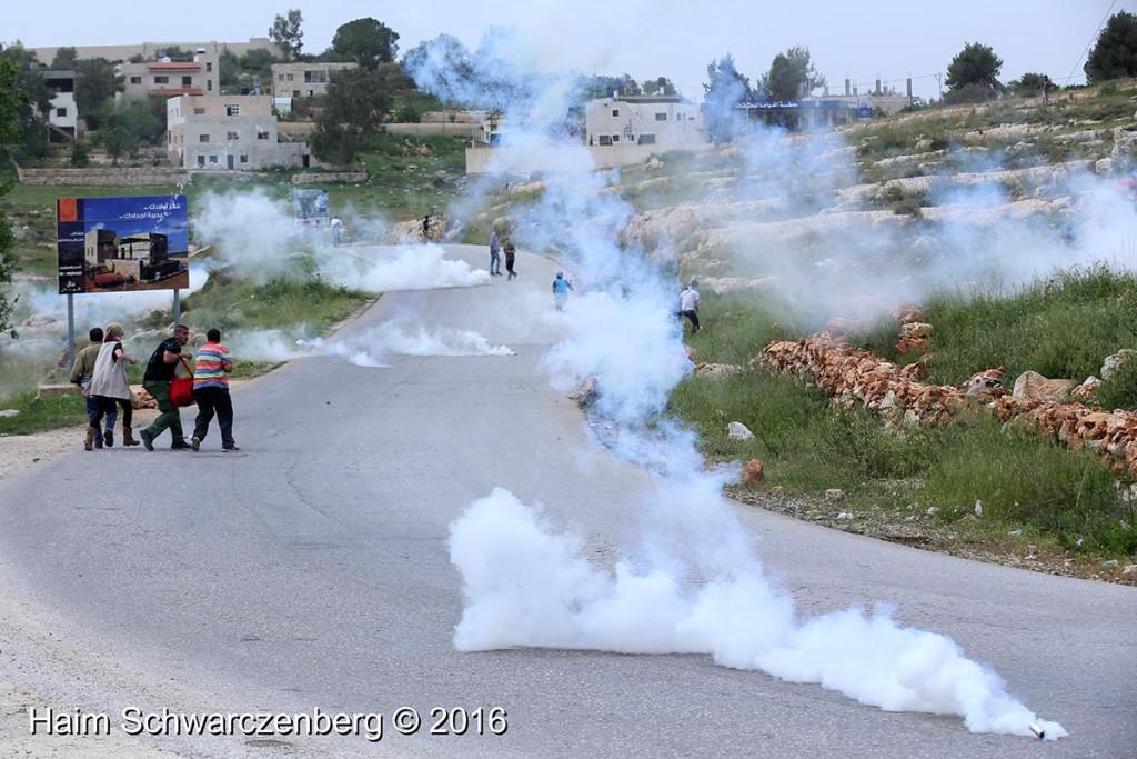 Nabi Saleh 25/03/2016 | IMG_4285