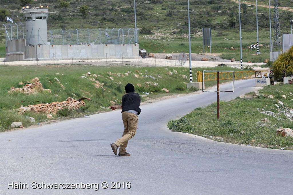 Nabi Saleh 25/03/2016 | IMG_4368