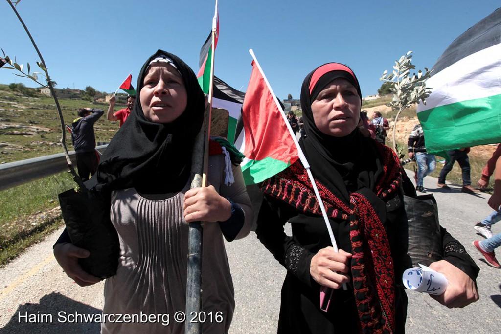 Nabi Saleh 01/04/2016 | IMG_2879