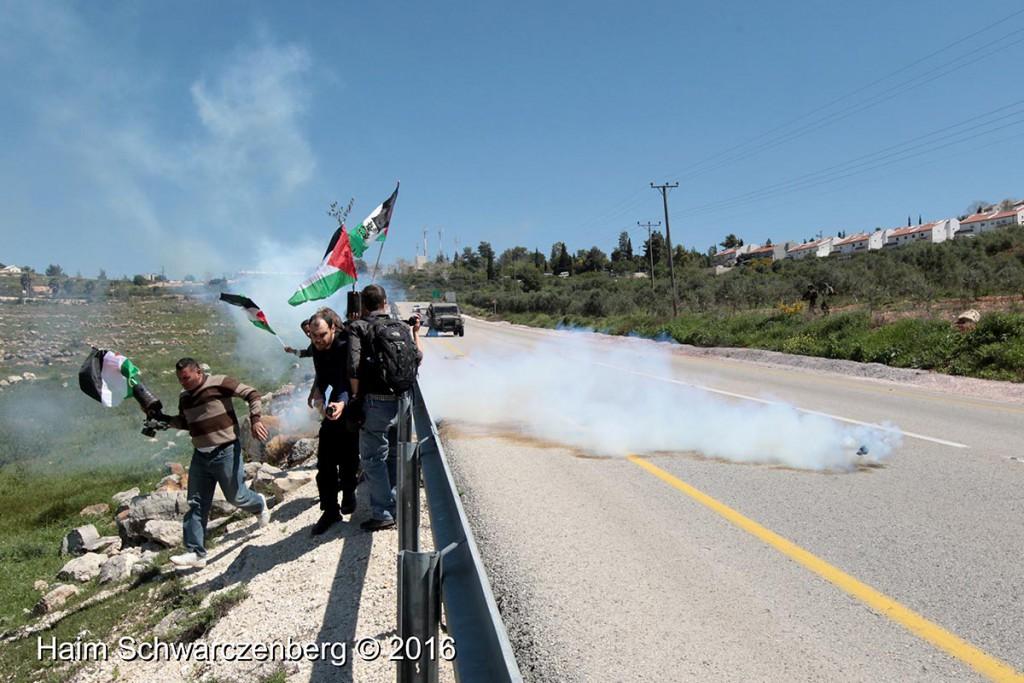 Nabi Saleh 01/04/2016 | IMG_2909