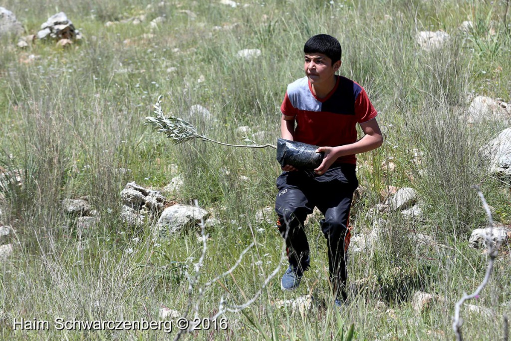 Nabi Saleh 01/04/2016 | IMG_4855