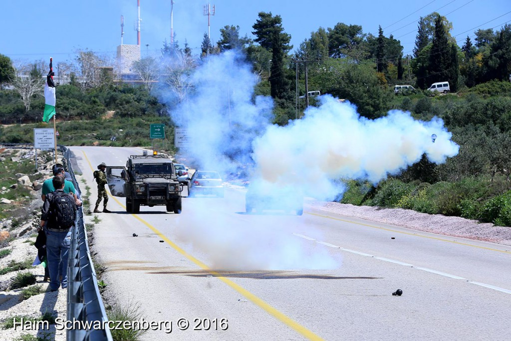 Nabi Saleh 01/04/2016 | IMG_4882
