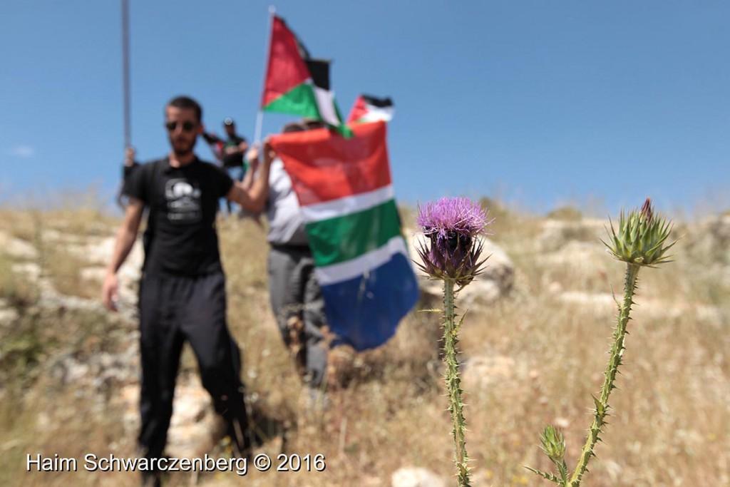 Nabi Saleh 29/04/2016 | IMG_3197