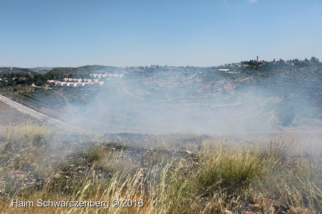 Nabi Saleh 29/04/2016 | IMG_3207